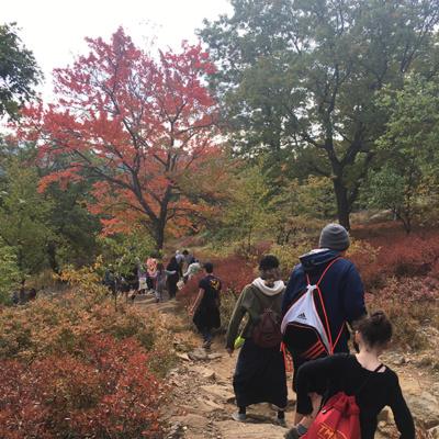 2016-10-16-Bear Mountain hike-11